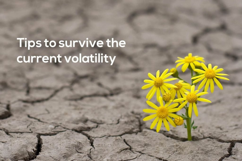 Five Tips to Survive the Current Volatility